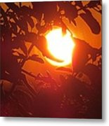 Framed Sun Metal Print