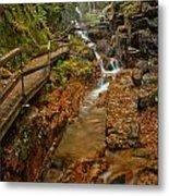 Franconia Notch Lush Greens And Rushing Waters Metal Print