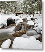 Franconia Notch State Park - White Mountains New Hampshire Usa - Flume Gorge Metal Print by Erin Paul Donovan