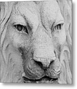 Frankie Lion Metal Print