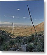 Franklin Mountains Landscape 4 Metal Print