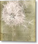 Free To Fly ... Metal Print