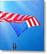 Freedom In Flight  Metal Print
