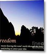 Freedom Means 002 Metal Print