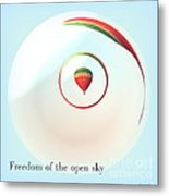 Freedom Of The Open Sky Metal Print