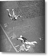 Freefalling Nova Scotia Skydivers In Stewiacke Metal Print