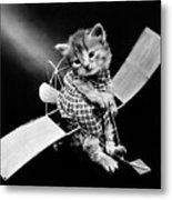 Frees Kittens, C1914 Metal Print