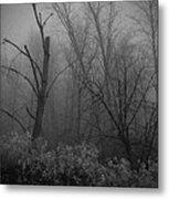 Freezing Rogue Valley Fog At Night Metal Print