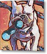 French Bulldog And Toy Metal Print