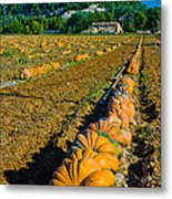 French Farm Near Lacoste Metal Print