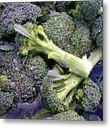 Fresh Broccoli Metal Print