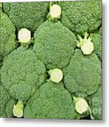 Fresh Broccoli Pattern Metal Print