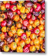 Fresh Colorful Hot Peppers Metal Print