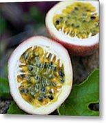 Fresh Cut Lilikoi Fruit Metal Print