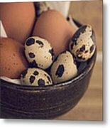 Fresh Eggs Metal Print