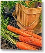 Fresh Garden Vegetables Metal Print