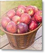 Fresh Red Apples Metal Print
