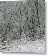 Fresh Snow At Roquin Metal Print