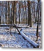 Fresh Snow In The Woods Metal Print