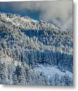 Fresh Snow On The Mountain Metal Print