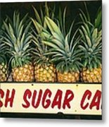 Fresh Sugar Cane Metal Print