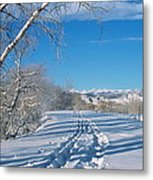 Fresh Tracks Metal Print