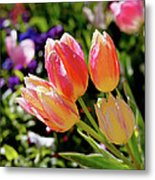 Fresh Tulips Metal Print