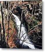 Fresh Water Streams Around Poconos Pa America Usa  Metal Print