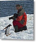 Friend Of The Penguins... Metal Print