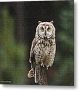 Friendly Owl In The Forest Metal Print