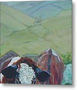Friesian Holstein Cows Metal Print