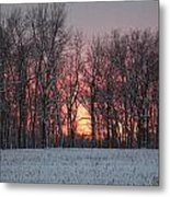 Frigid Warmth Metal Print