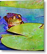 Frog - On A Water Lily Pad Metal Print