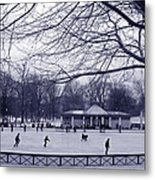 Frog Pond Skating Metal Print