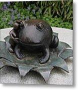 Frog Whisperer Metal Print