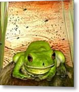 Froggy Heaven Metal Print