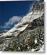 From Fall To Winter Metal Print