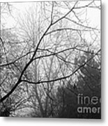 From Hence We Come Metal Print