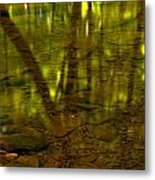 From River Rocks To Forest Reflections Metal Print