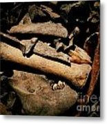 From The Bone Yard 1 Metal Print
