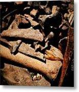 From The Bone Yard 2 Metal Print
