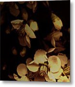 From The Darkness Into The Light Metal Print