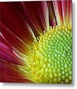 From The Florist Metal Print