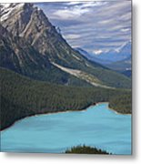 From The Lookout Metal Print