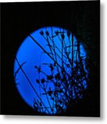 From The Moon Metal Print