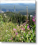 From The Mountain Metal Print