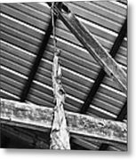 From The Rafters Metal Print