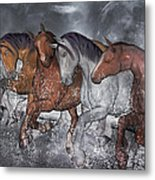 From The Sea Metal Print by Betsy Knapp