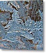 Frost Macro Metal Print