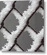 Frost On The Fence Metal Print